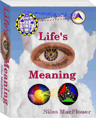 cover of Life's Hidden Meaning